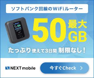 モバイルルーター おすすめ 格安 格安sim 8